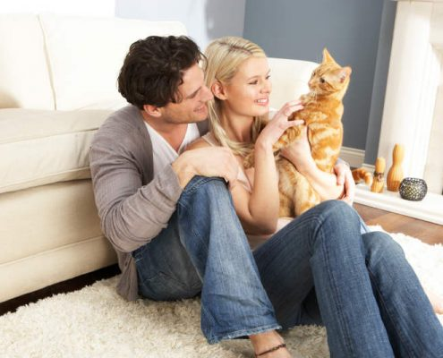 couple deciding to board their cat